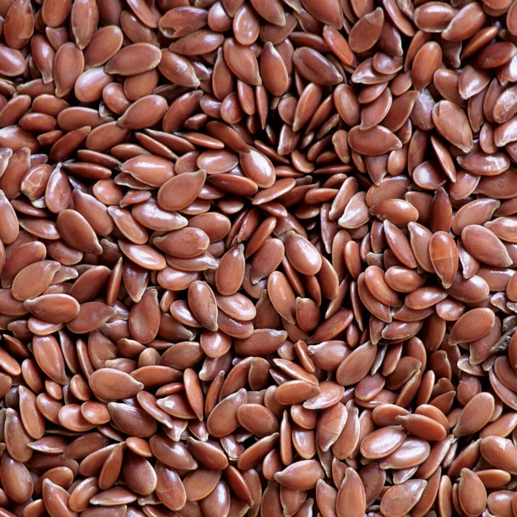 Flax Seeds in Ocean Raw Food Suppliers